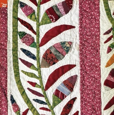 trailing-vines-closeup